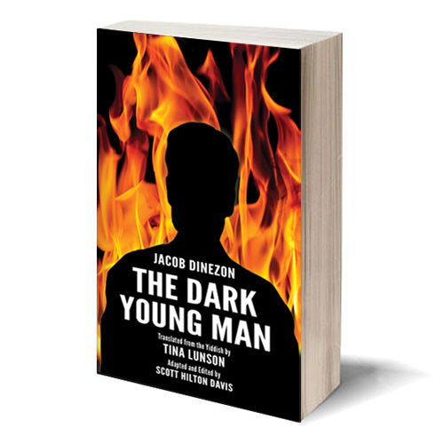 The Dark Young Man Book Cover